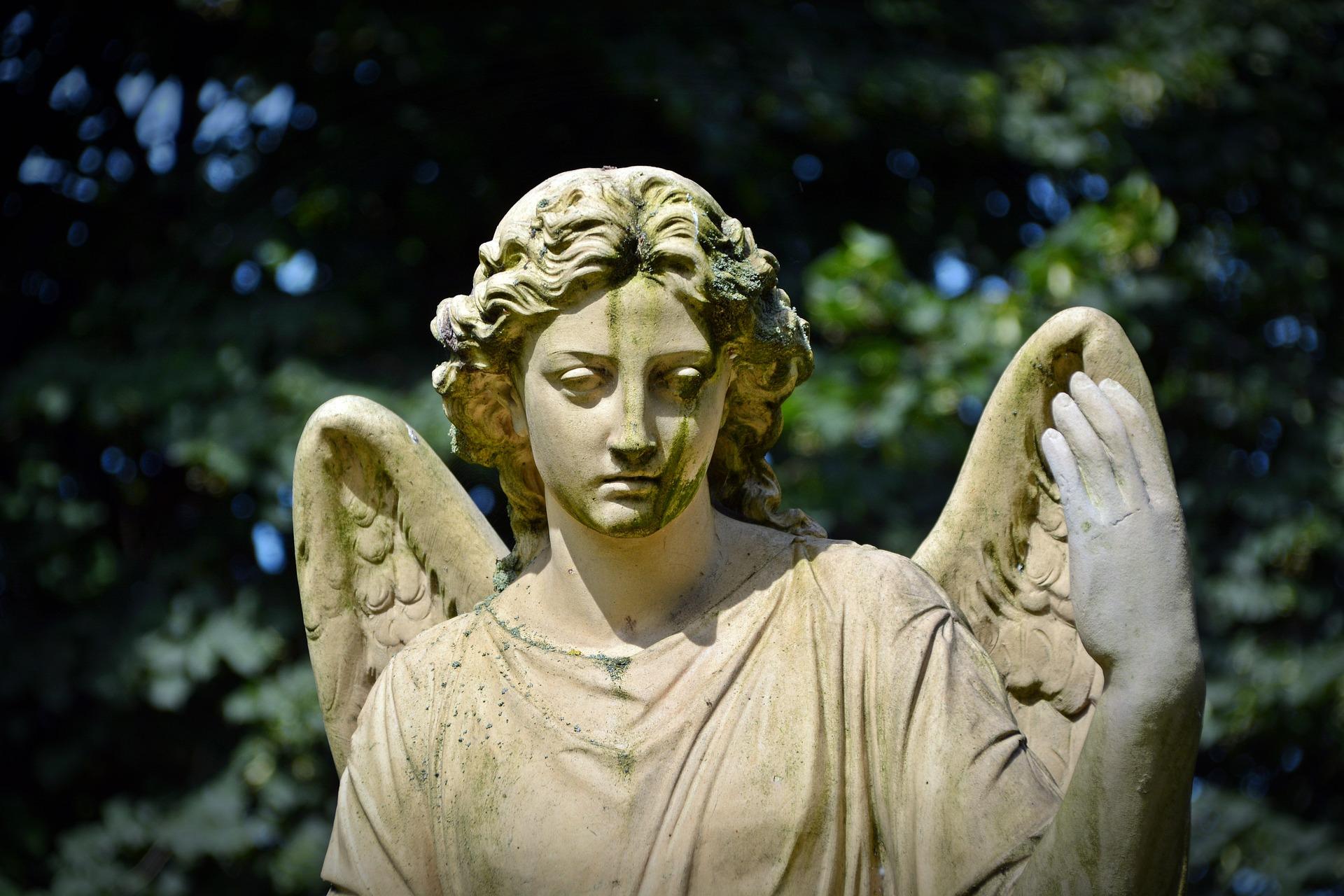 gedulas angelas