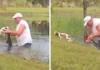74 m. vyras plikomis rankomis grūmėsi su krokodilu, kad išgelbėtų savo šuniuką