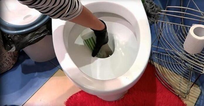 Santechnikas patarė, kaip valyti tualetą be chemikalų