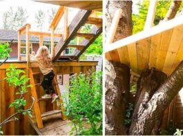 Rūpestingas tėtis pastatė namelį medyje savo dukroms. Jis nuostabus!