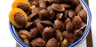 Kur galima panaudoti abrikosų kauliukus? Daugiau jų neišmesite