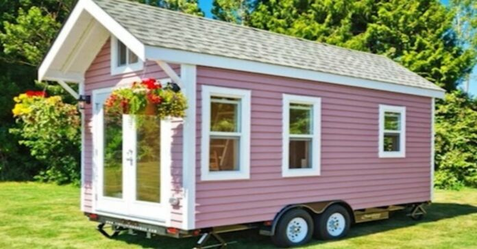 15 kvadratinių metrų name yra viskas, ko reikia patogiam gyvenimui. Pažiūrėkite!