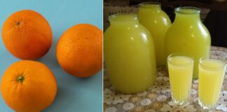 Gaivus, sveikas ir skanus apelsinų gėrimas patiks net vaikams