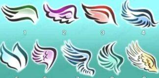 Testas: pasirinkite sparnus ir sužinokite, koks žmogus esate