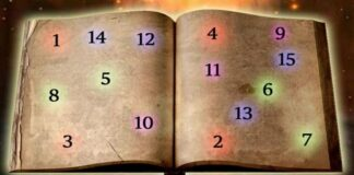 Likimo knyga suteiks atsakymą į jūsų klausimą...