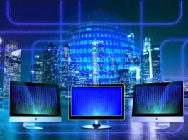 internetas monitoringas