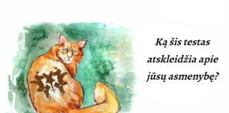 Rorschacho testas su katėmis: ką jis atskleis apie jūsų asmenybę?