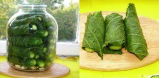 Marinuoti agurkai su krienų lapais: idealus rūgštus skanėstas kiekvienam gurmanui