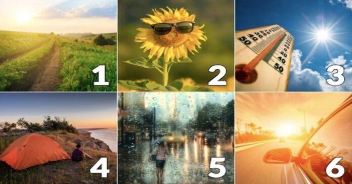 Pasirinkite paveikslėlį ir sužinokite, koks bus liepos mėnuo