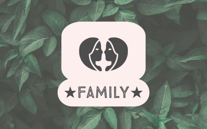 šeimą