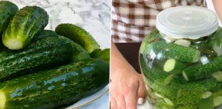 Itin traškūs, lengvai marinuoti agurkai - populiariausias užkandis ant bet kokio stalo
