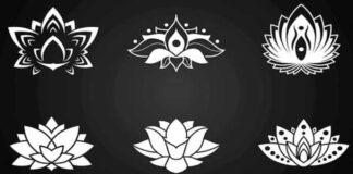 Pasirinkite lotoso simbolį ir gausite jums aktualų patarimą