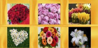 Testas moterims: pasirinkite gėlę ir ji atskleis jūsų charakterio subtilybes
