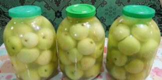 Rauginti obuoliai. Ypatingas skanėstas žiemai