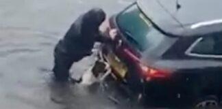 Šuo padeda šeimininkui išstumti automobilį iš vandens. Koks puikus augintinis!