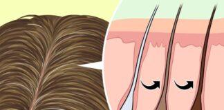 Kaip atgauti pražilusių plaukų spalvą, jų nedažant?