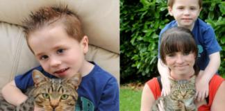 Vaikai tyčiojosi iš penkiamečio... Bet tada atėjo katinas