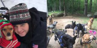 Moteris į savo namus priėmė net 7 neįgalius šunis...